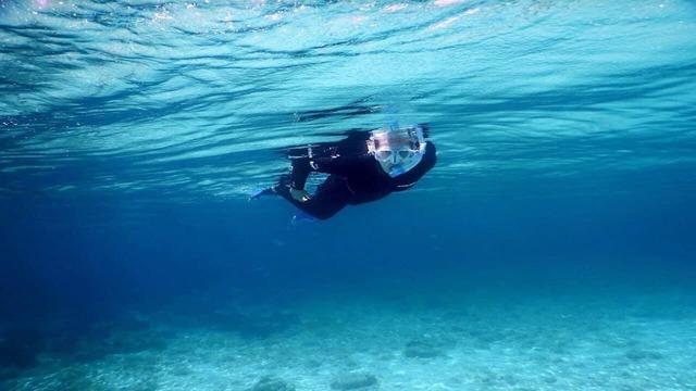 Sea Action